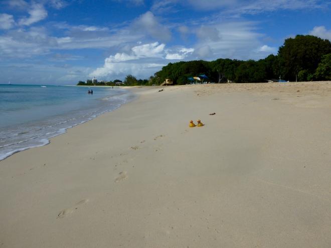 Beautiful beach in Barbados