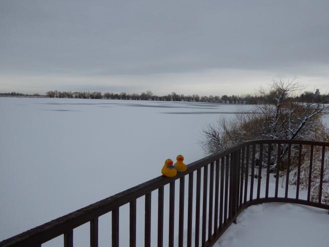 Snow on frozen lake