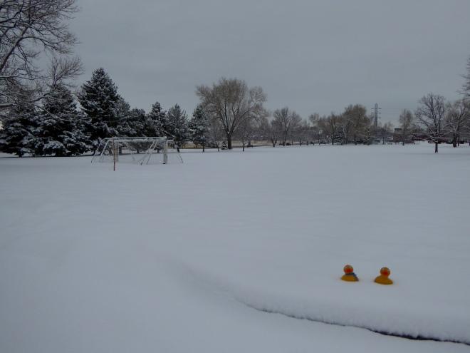 Fresh snow on school play ground