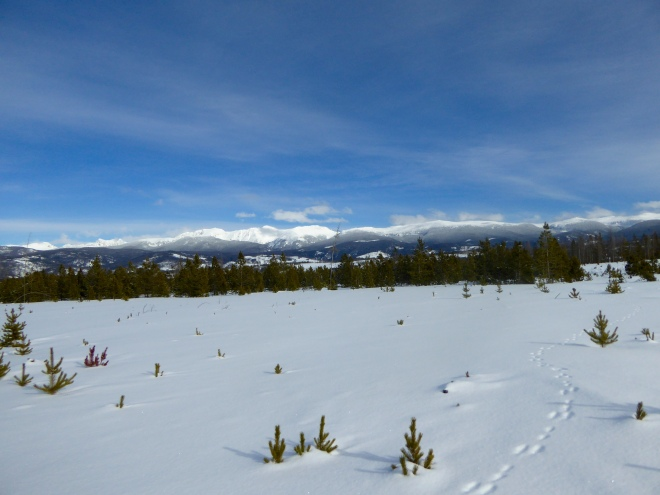 Colorado Rocky Mountains from our sleigh